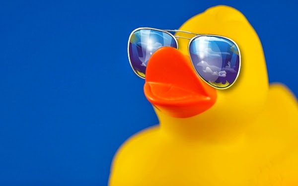 ducks+sunglasses+1280x800+wallpaper_www.wallpaperhi.com_48.jpg