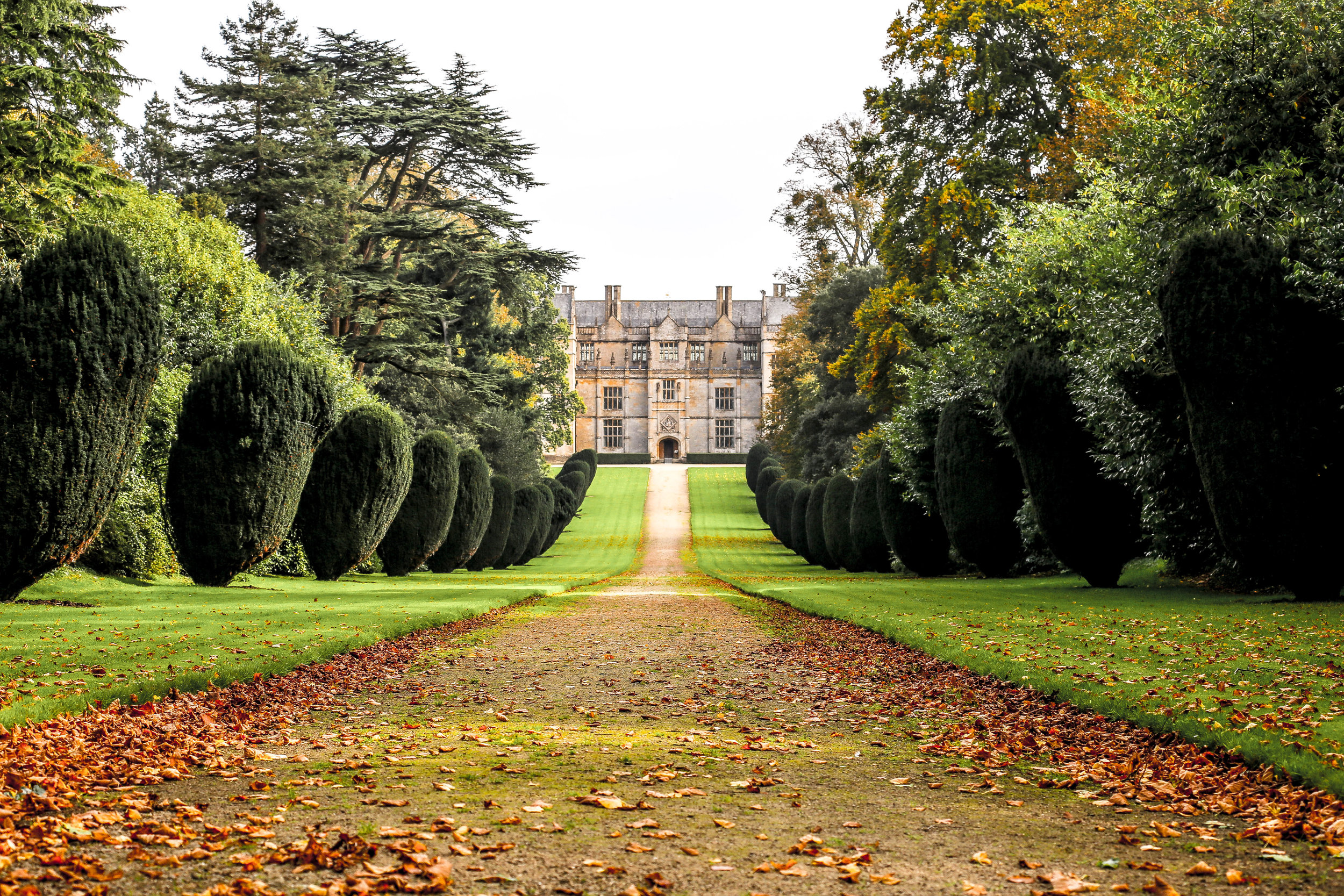 Down the autumnal trail  Montacute UK
