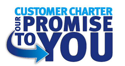 actionchimneys company charter