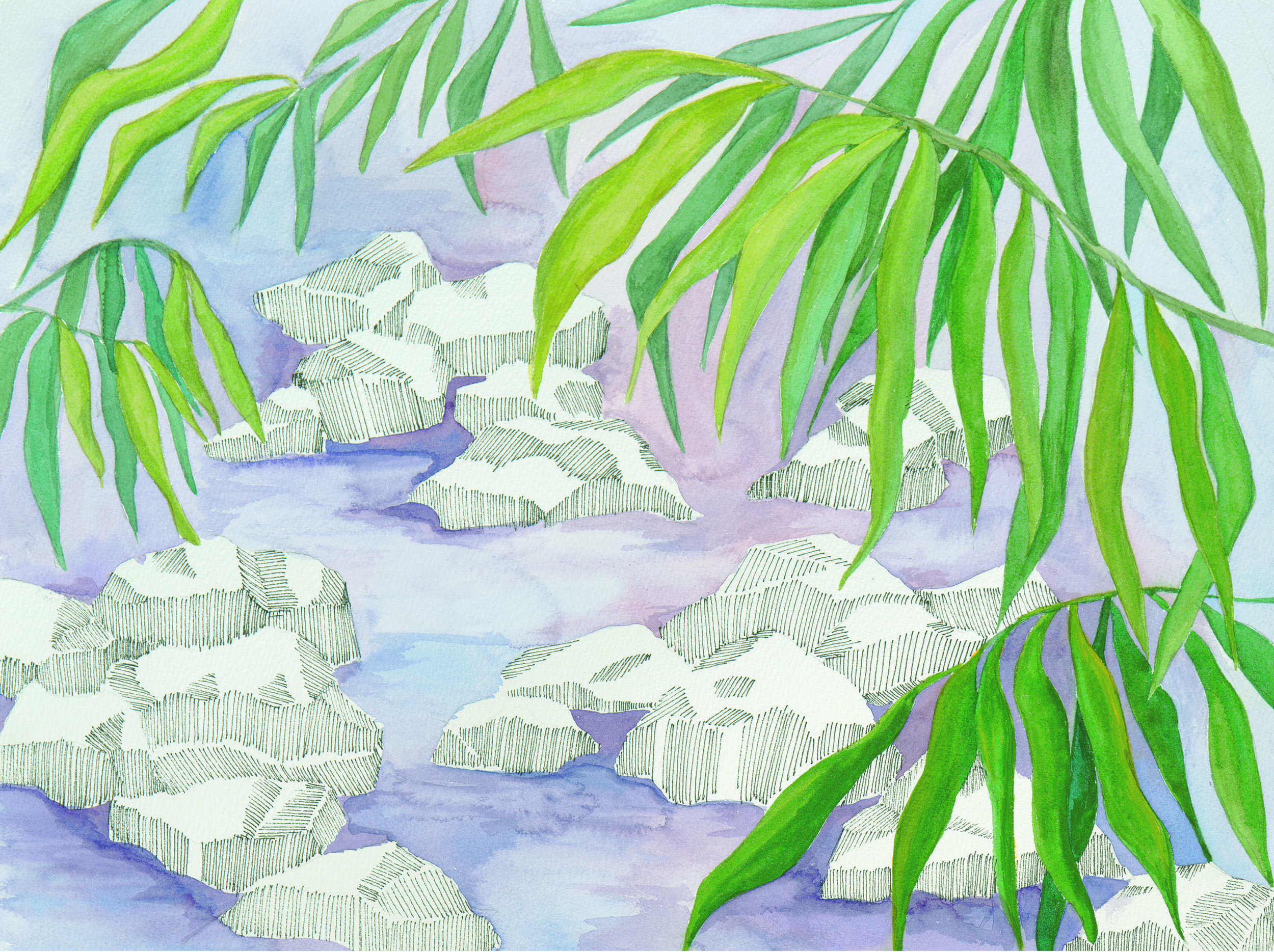 SARR_Tropical Water
