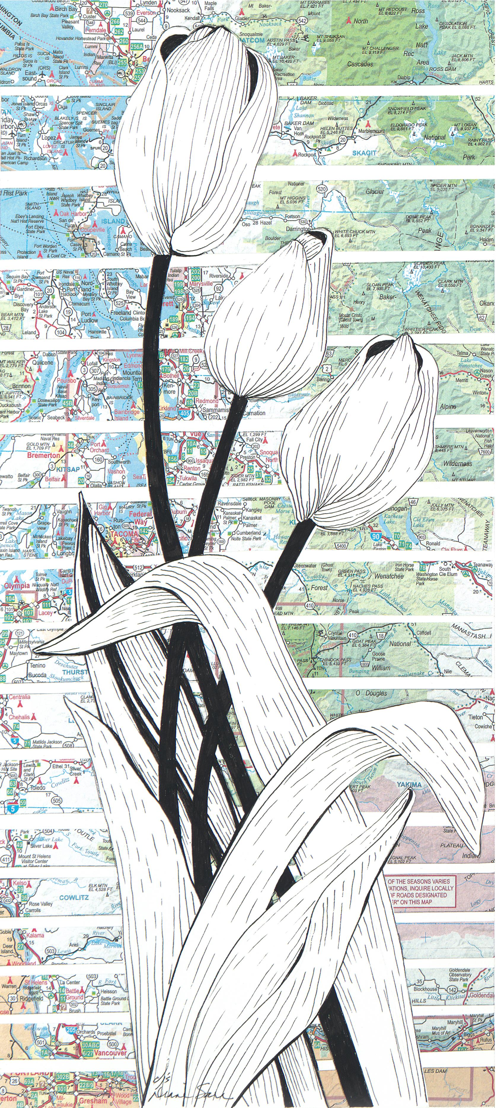 Wind Tulips