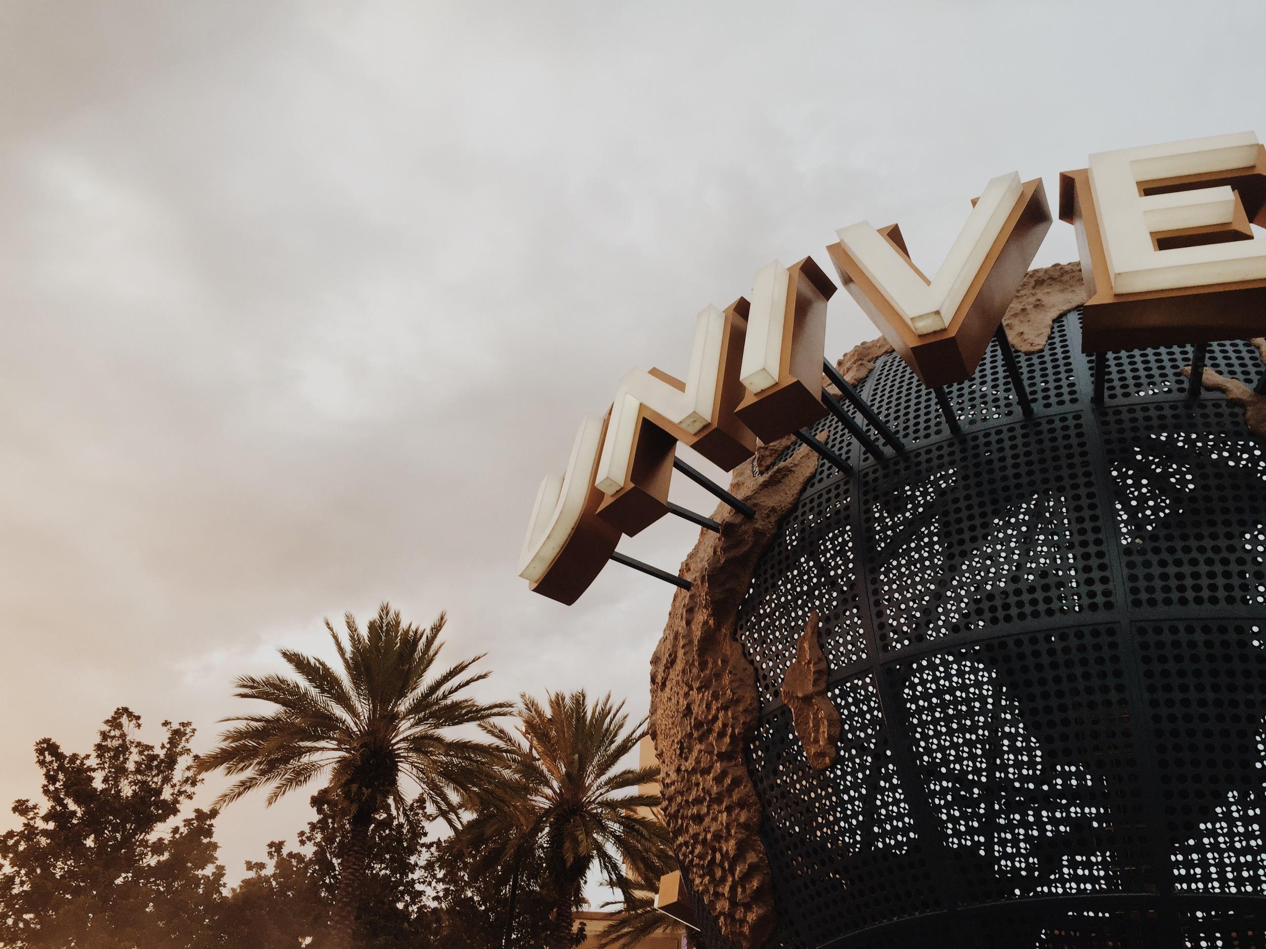 universal-orlando-sign-palm-trees