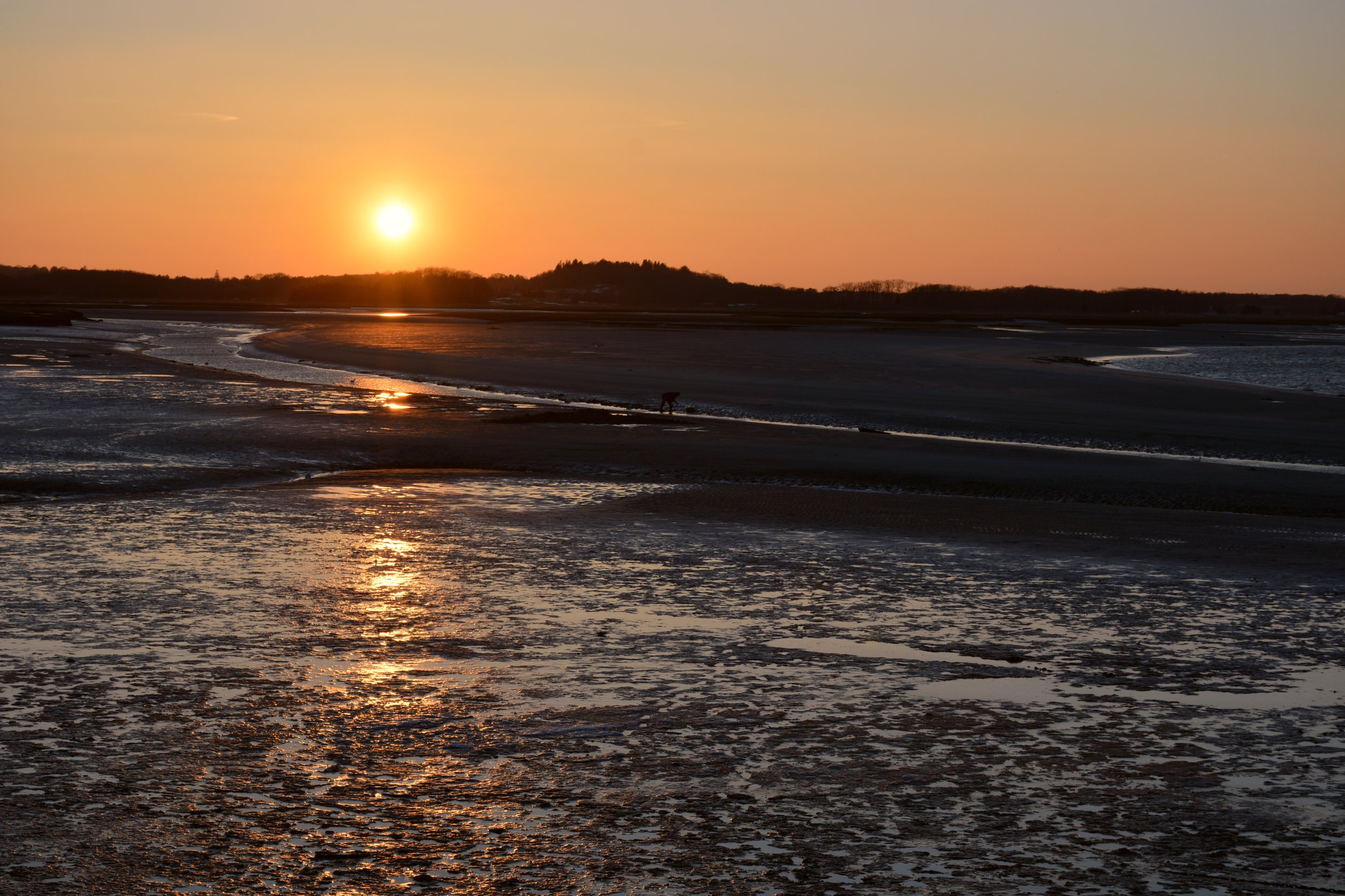 Low tide on the mudflats.