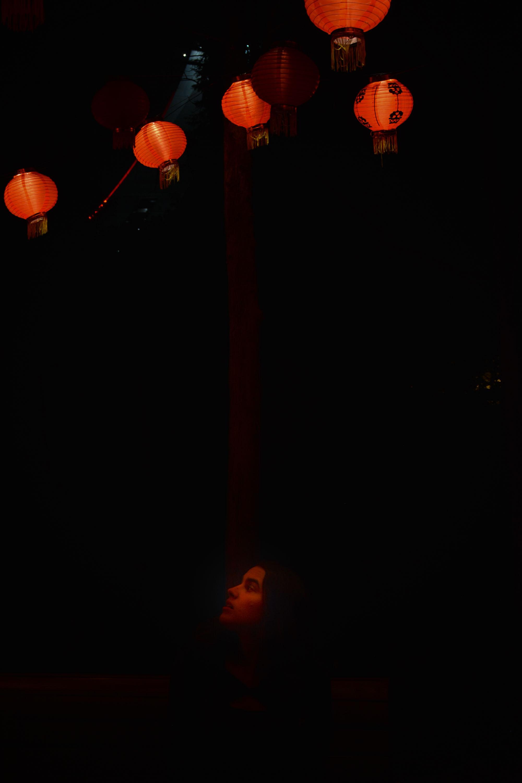 Jardins de lumière Montréal - Lantern