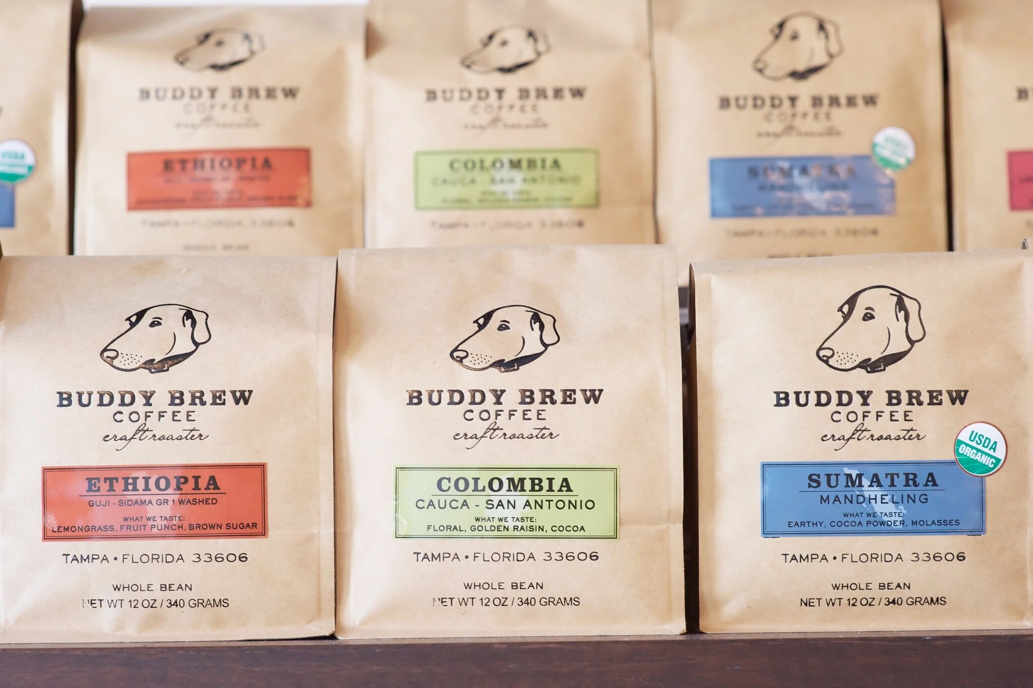Buddy Brew Coffee Is Finally Opening A Cafe In St Pete St Pete Rising