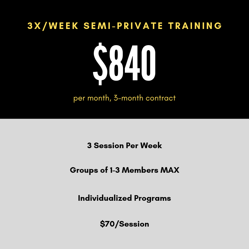 nyc semi private personal training 3x.png