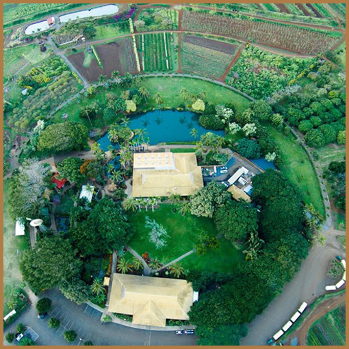 Maui Tropical Plantation - Town Center
