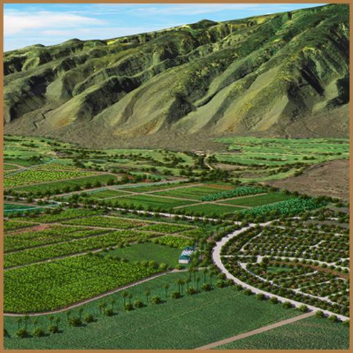 Agricultural Reserve Component
