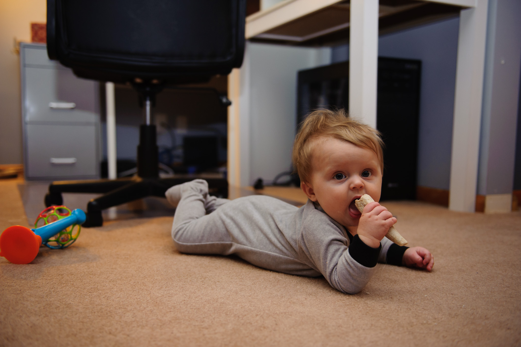 01 Jan 2017 | This little guy is just about 8 months old, rolling all over the place, and finding all of the things he shouldn't eat to put in his mouth. Sometimes that happens.