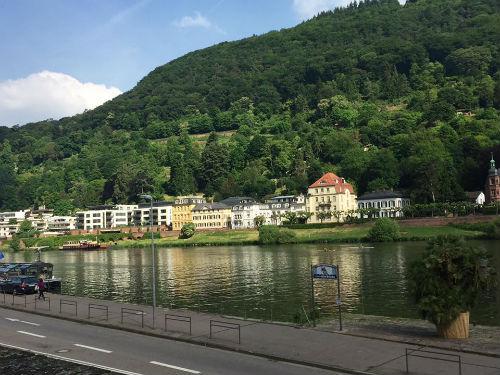 The houses along the Neckar