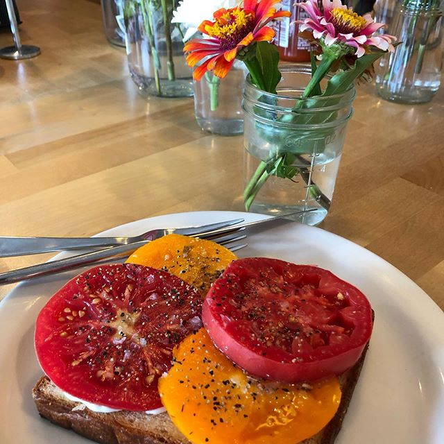 Mom's tomatoes @slagelfamilyfarm Maldon salt fresh cracked pepper on rosemary toast. Do not miss it. #tomatotoast #tomatoseason #heirloomtomatoes #lunchcounter #sodafountain