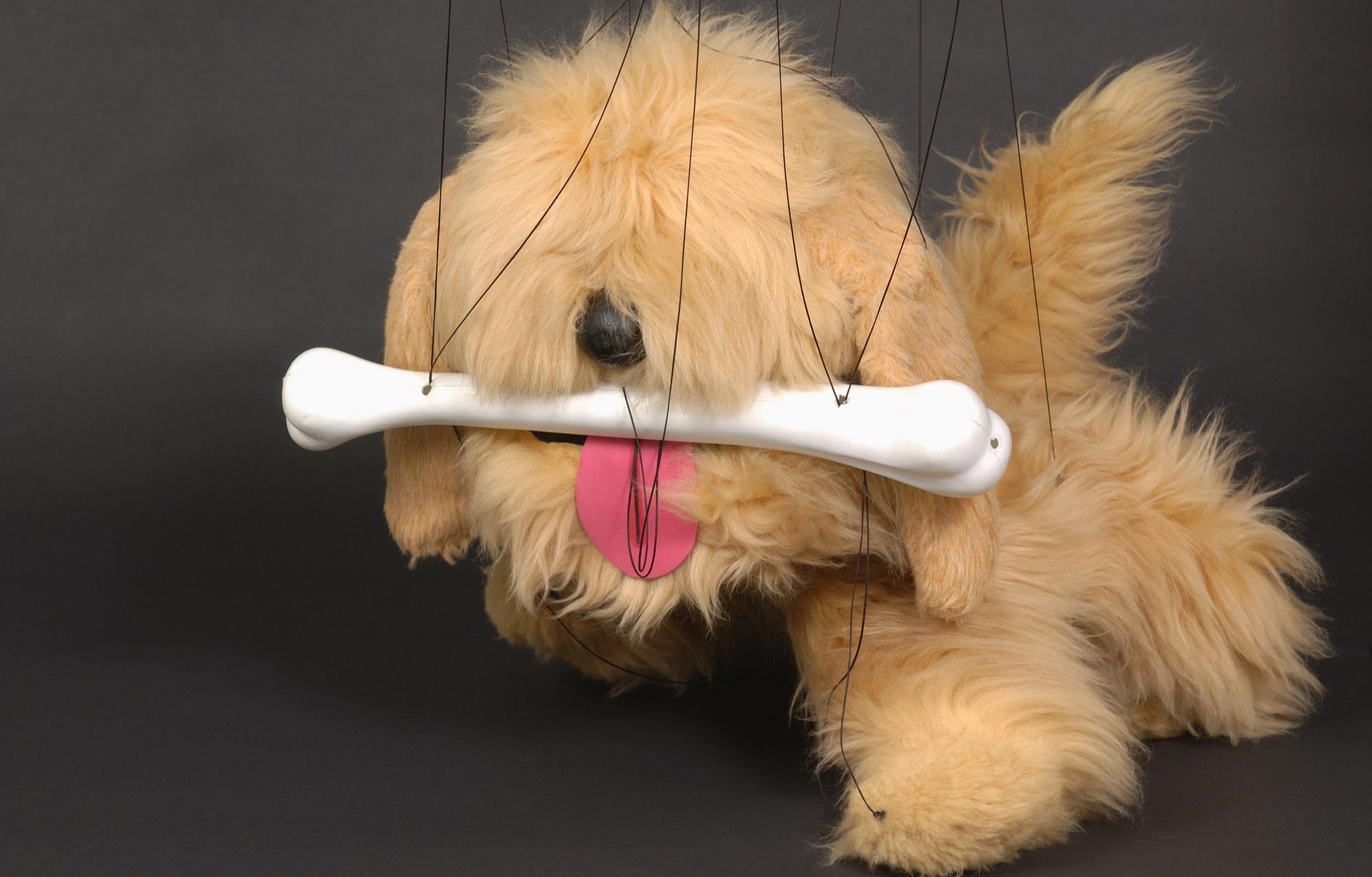 "Wayne Martin Puppets ""Zealand Dog"""