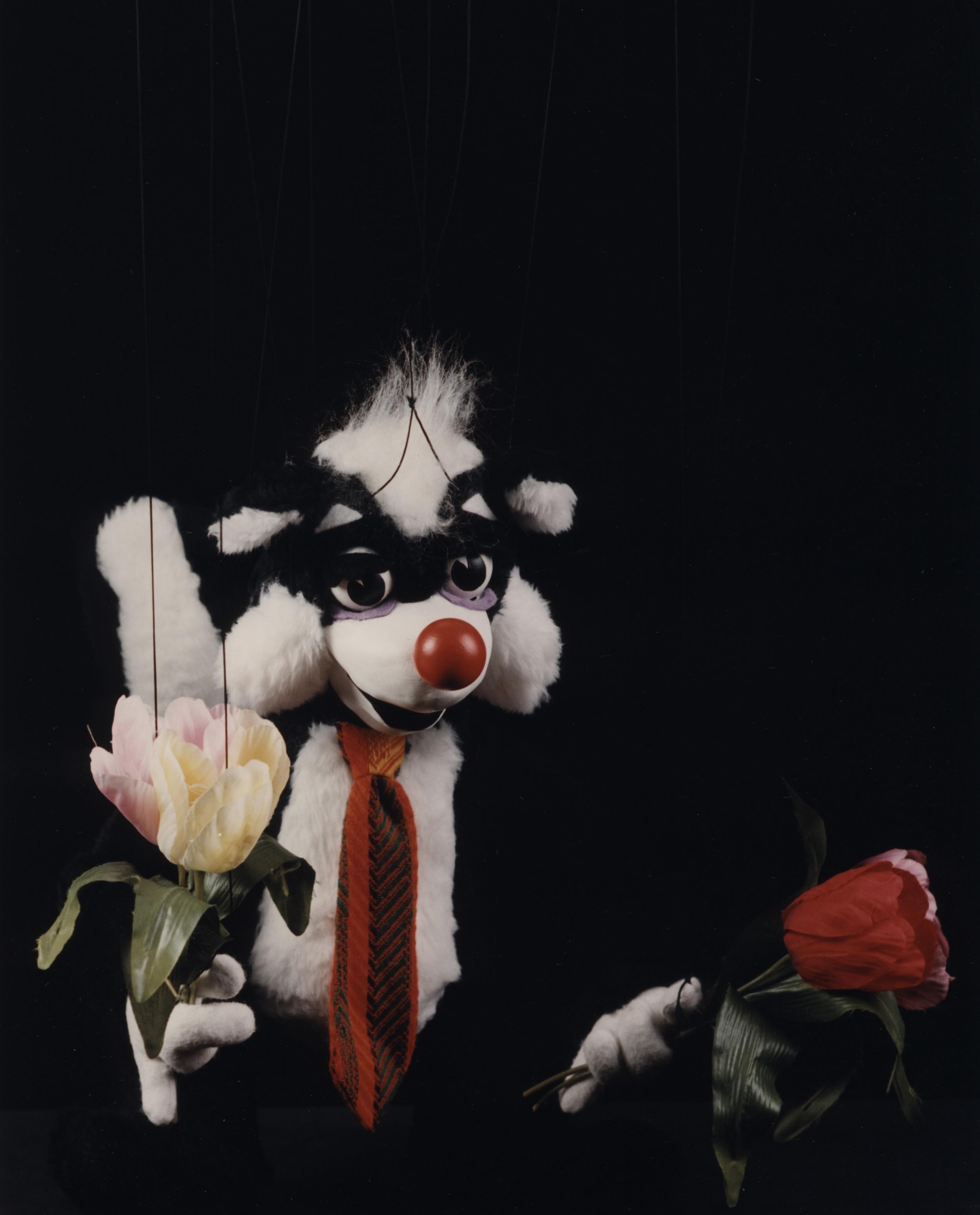 """Wayne Martin Puppets """"Zachary Skunk"""""""