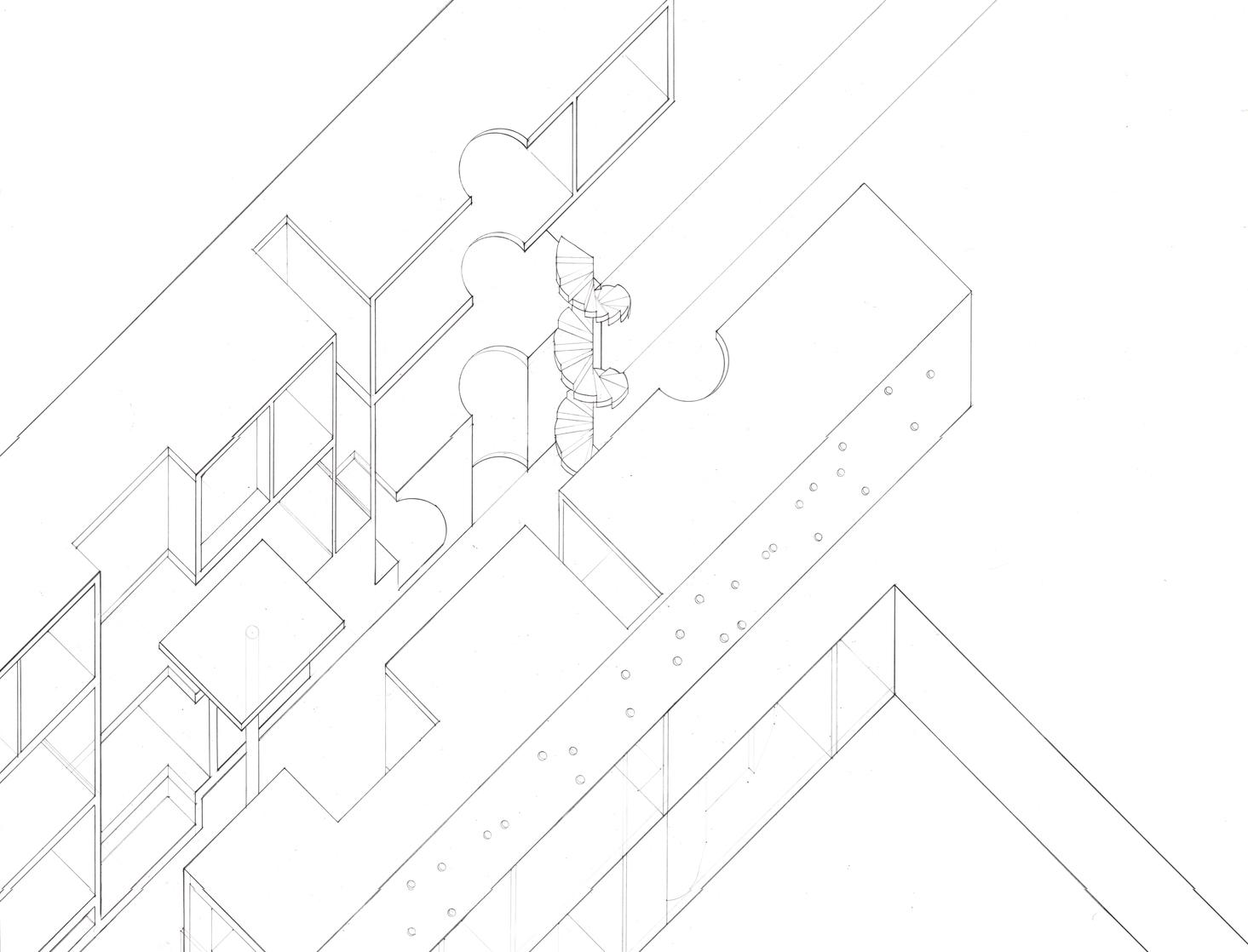 sectionaxon.jpg