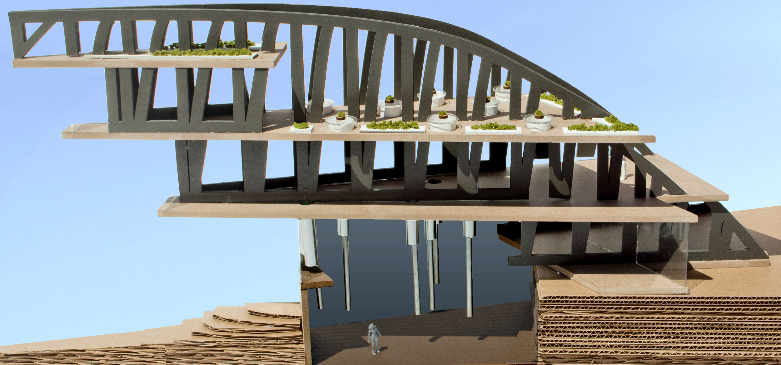 Final section model through dining structure, highlighting the areas of inhabitable space and food processing.