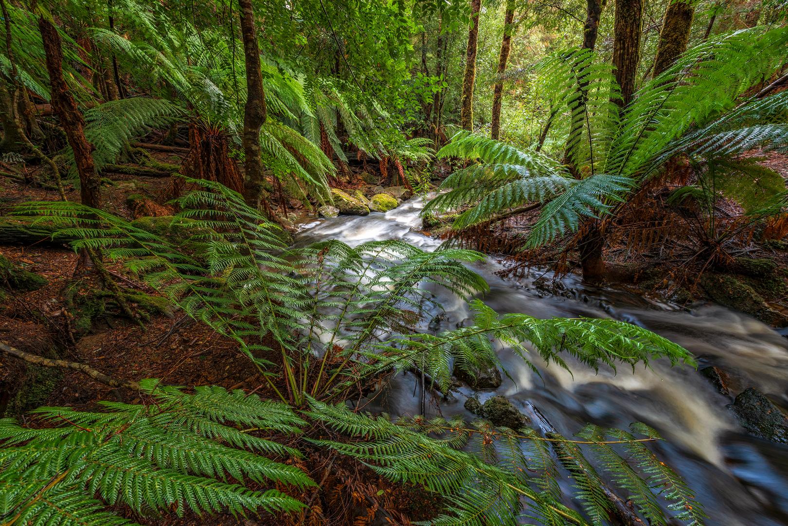 Nietta Creek