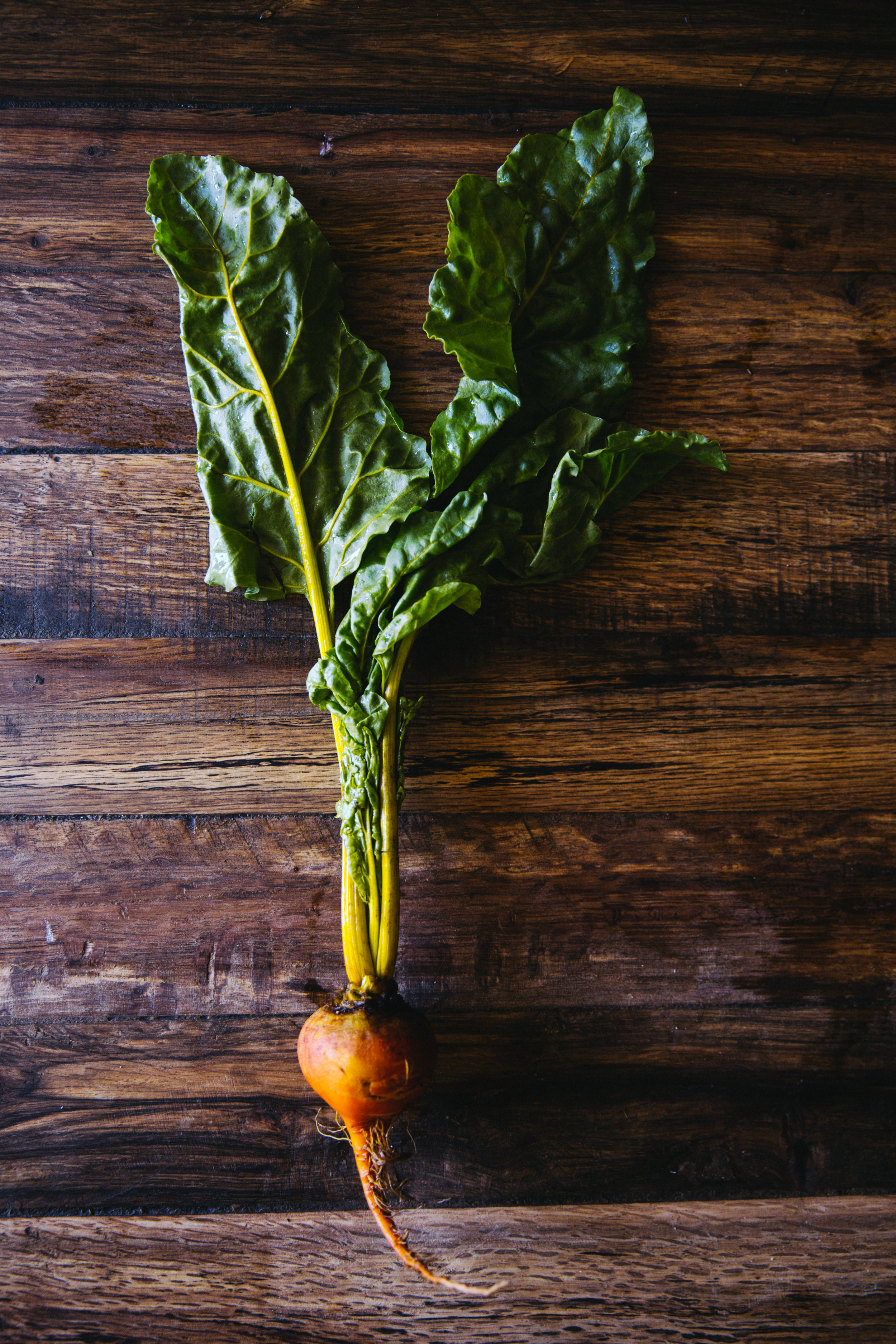 personal, chef, healthy, nutritious, meals, lentil salad 2