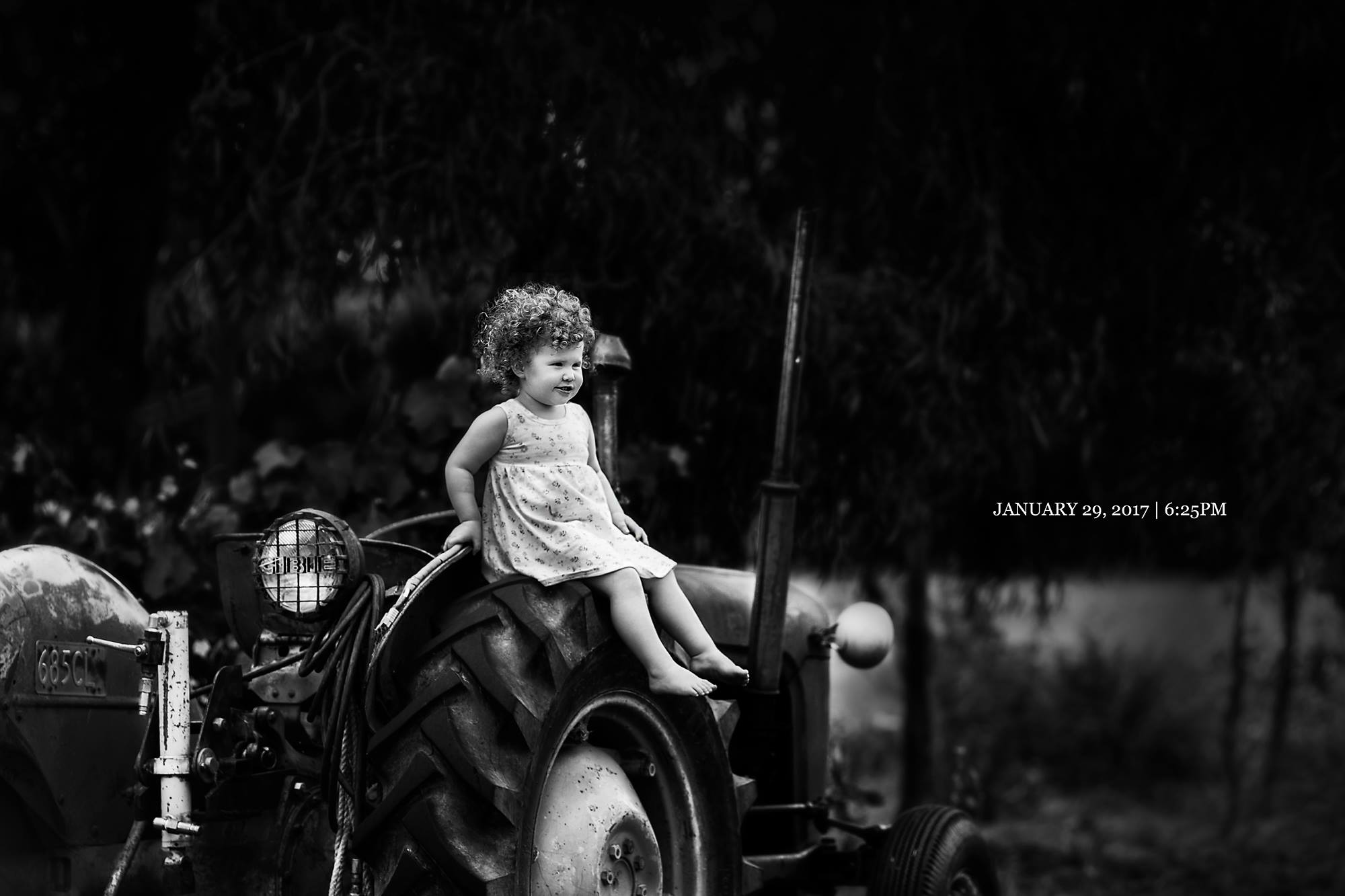 DAY TWENTY NINE   Grandad George's trusty ol' tractor.