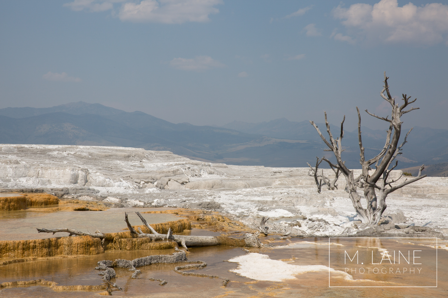 Mammoth-Pools-Yellowstone-5.png