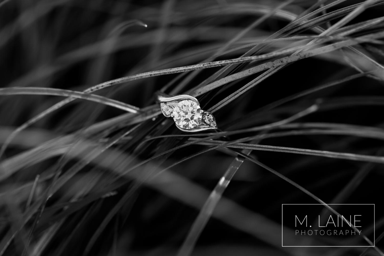 Mount-Rainier-National-Park-Engagement-9995.jpg