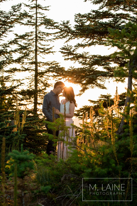 Mount-Rainier-National-Park-Engagement-2071.jpg