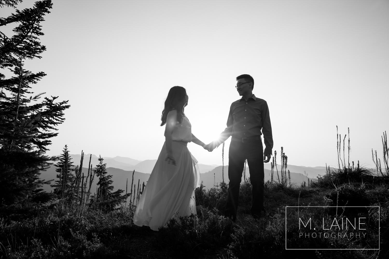 Mount-Rainier-National-Park-Engagement-0024.jpg