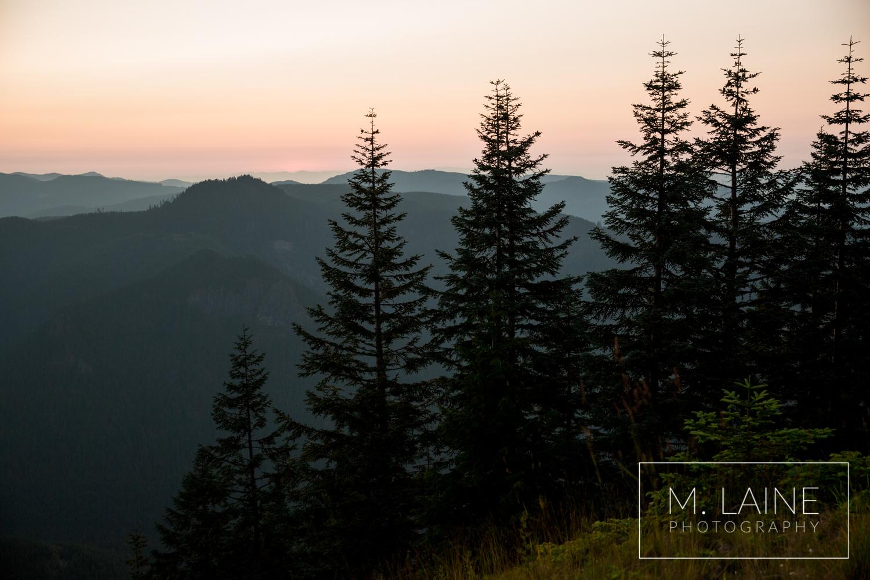 Mount-Rainier-National-Park-Engagement-0274.jpg