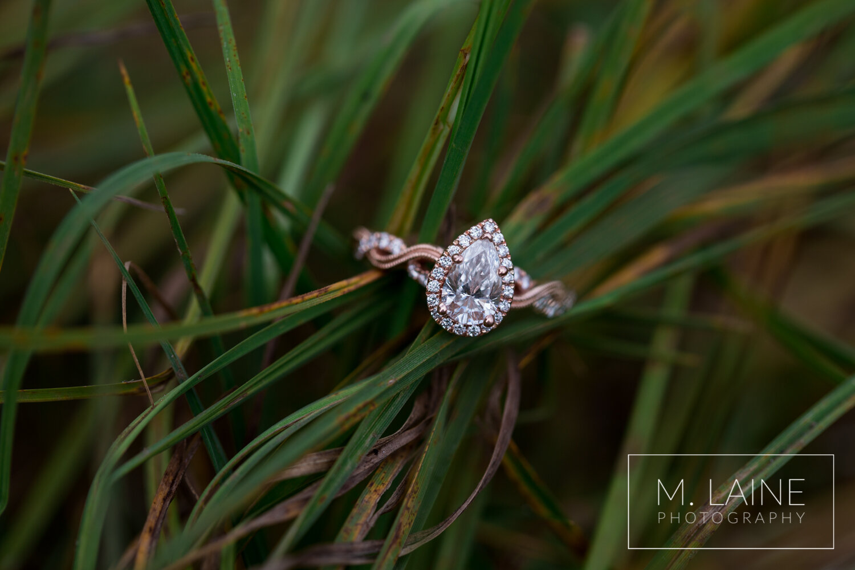 Mount-Rainier-Fall-Engagement-5494.jpg