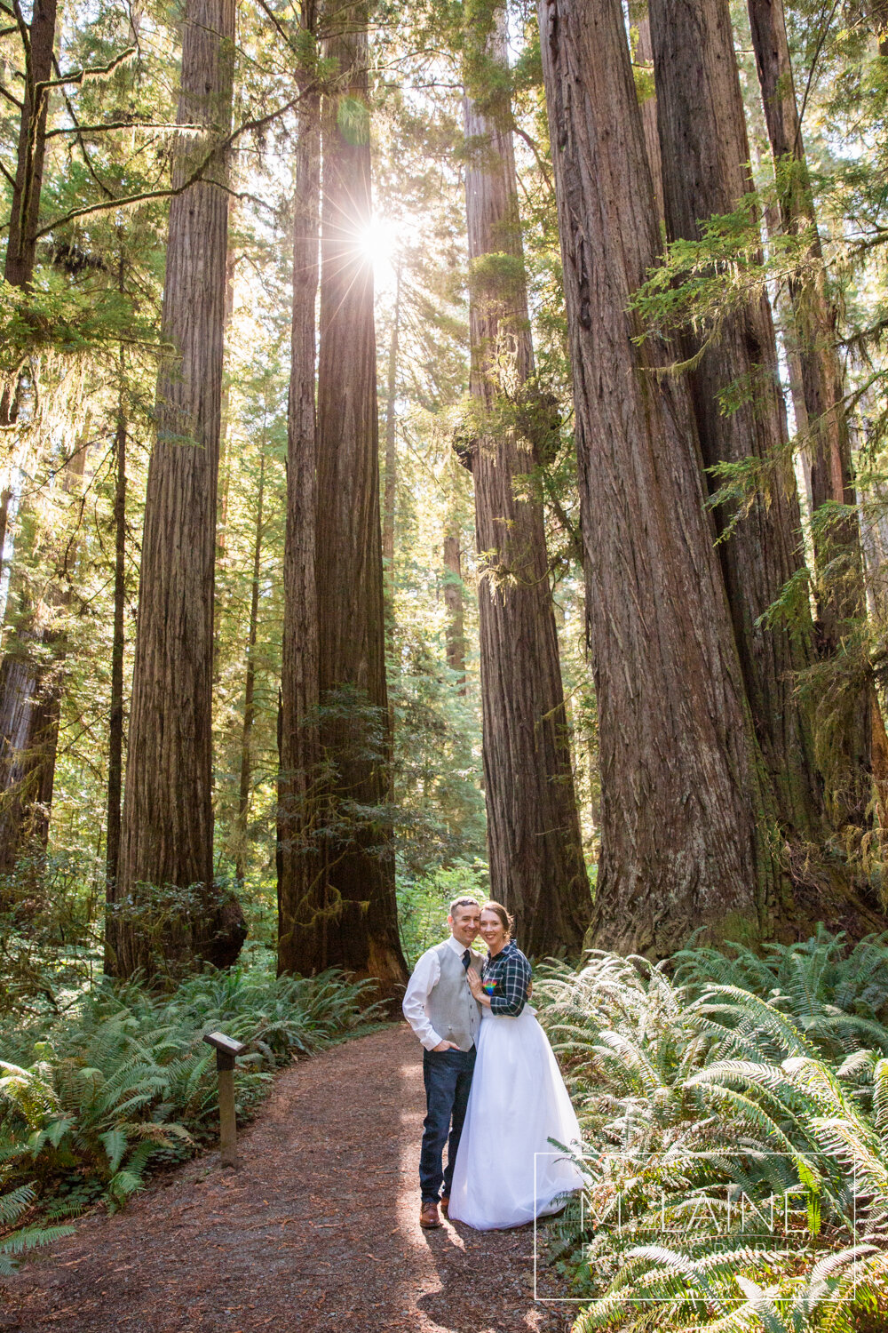 jedediah-smith-redwoods-state-park-wedding-3451.jpg