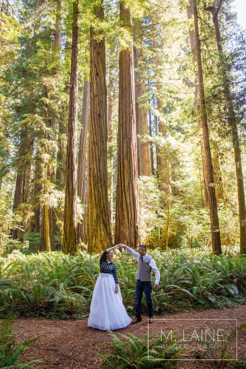 jedediah-smith-redwoods-state-park-wedding-3493.jpg