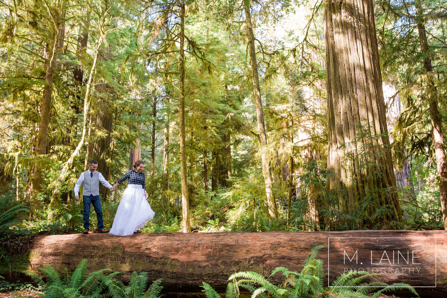 jedediah-smith-redwoods-state-park-wedding-3549.jpg