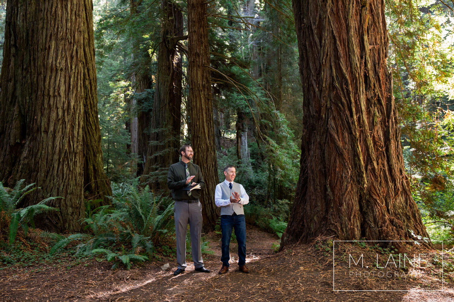 jedediah-smith-redwoods-state-park-wedding-3611.jpg