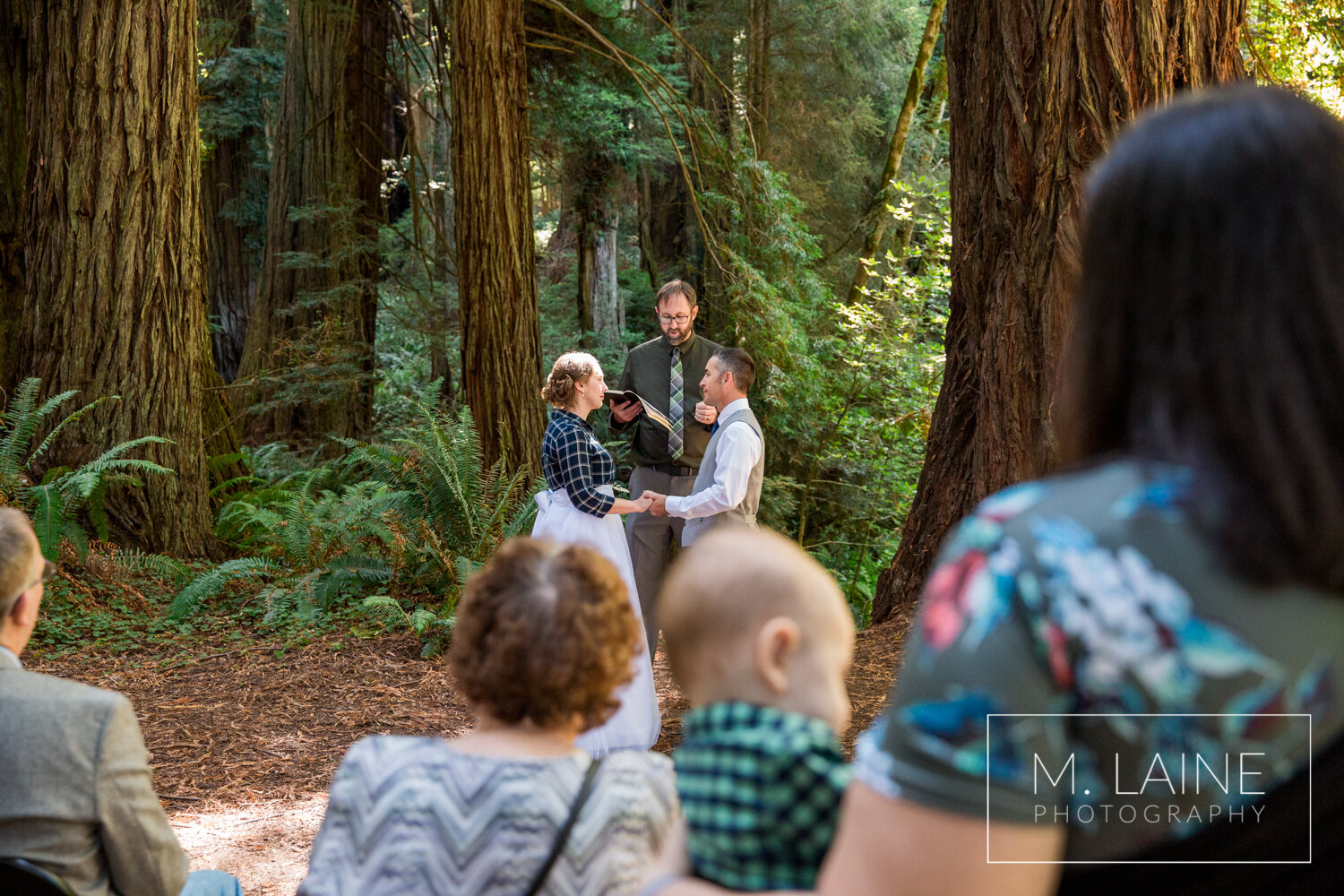 jedediah-smith-redwoods-state-park-wedding-3641.jpg