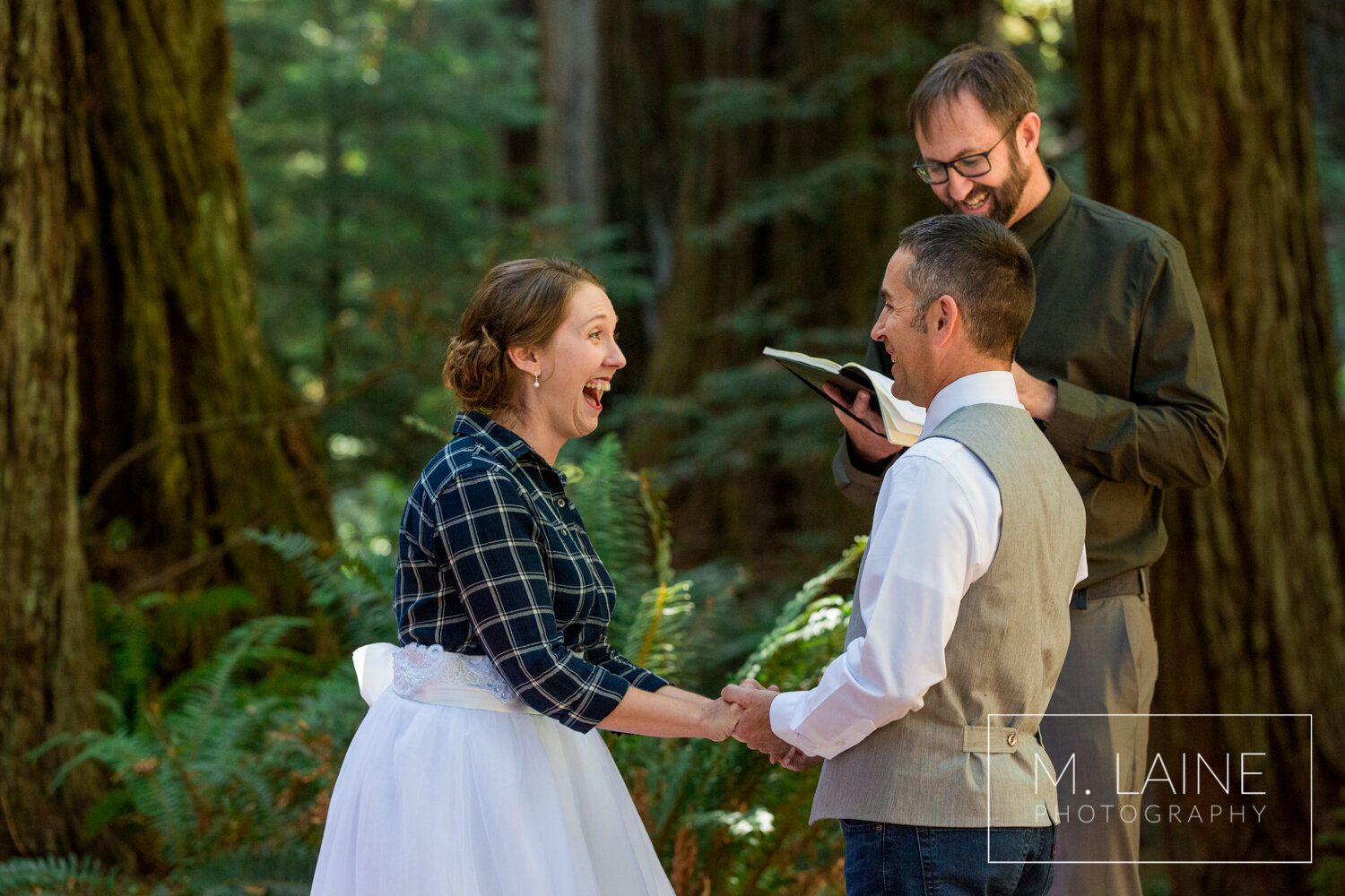jedediah-smith-redwoods-state-park-wedding-6069.jpg