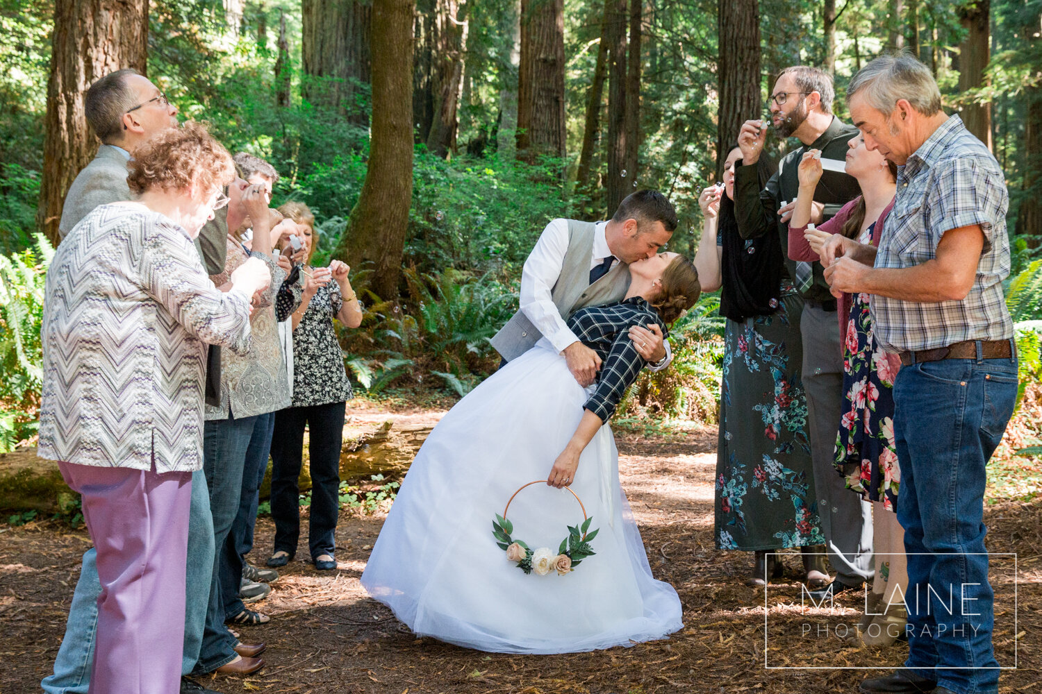 jedediah-smith-redwoods-state-park-wedding-3856.jpg