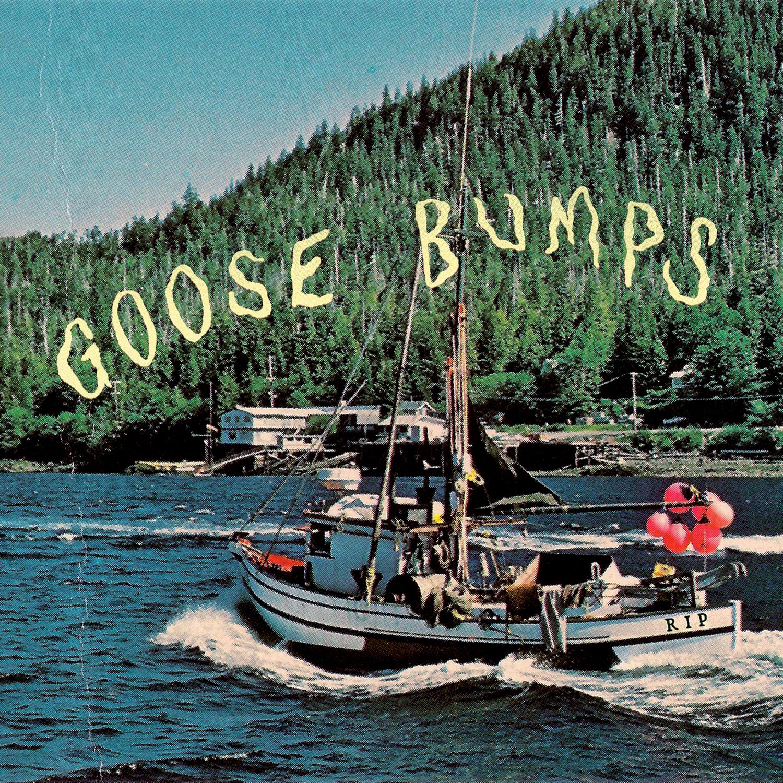 Goose Bumps Cover.jpg