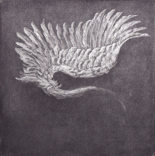 """""""Wing Study""""  5.8"""" x 6""""  soap ground etching"""