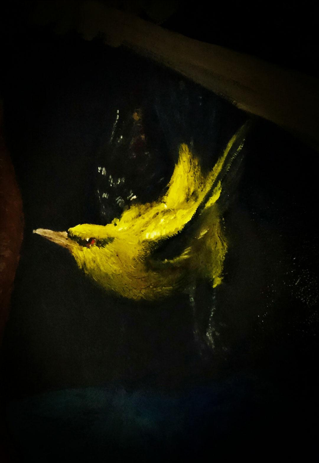 bird-study2.jpg
