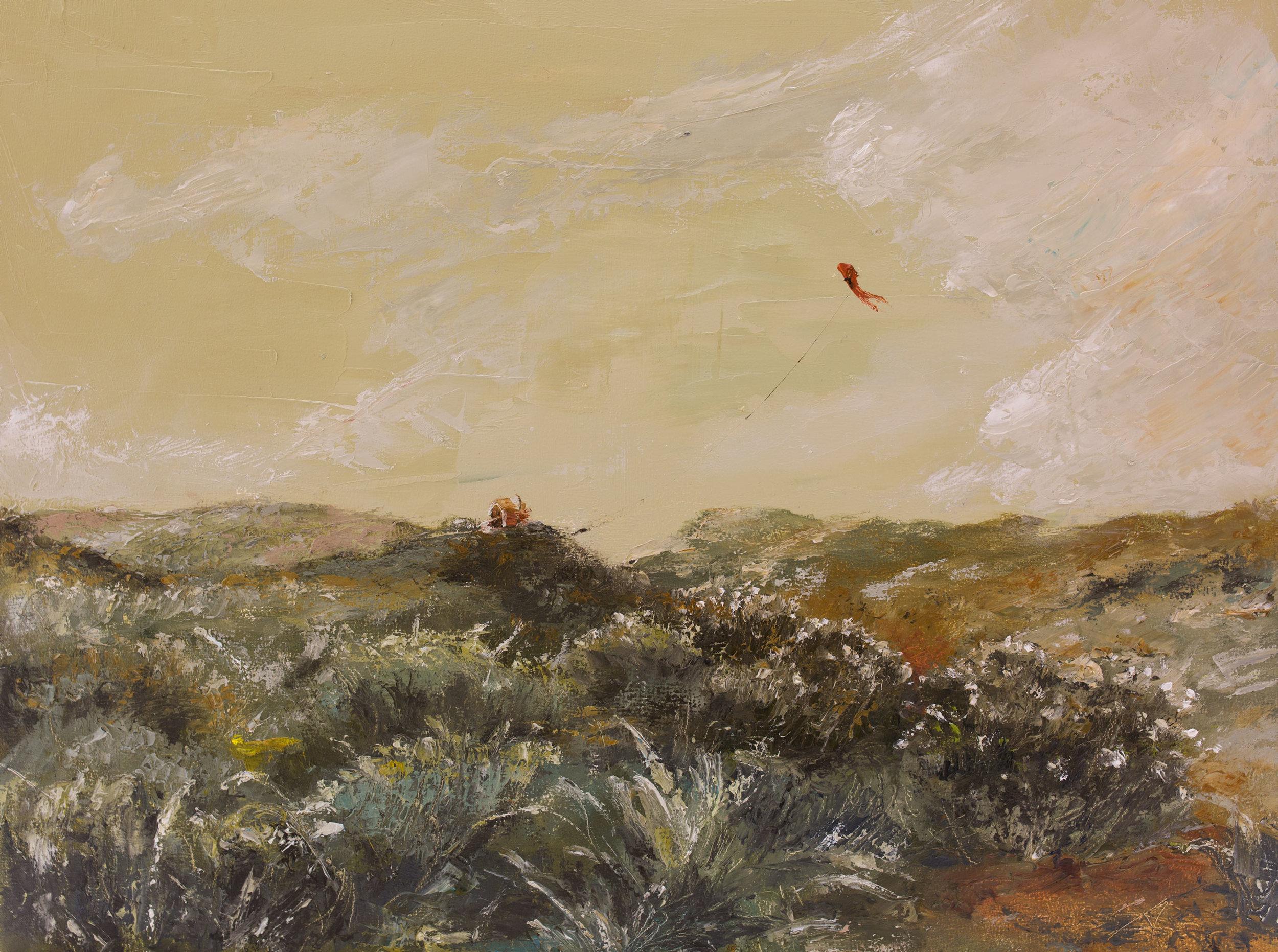 red-kite-3.jpg