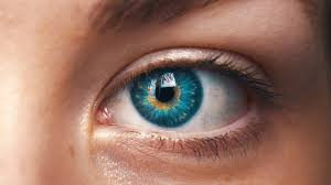 Retina International eye.jpg