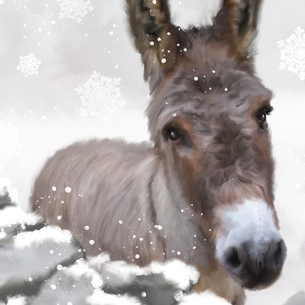 Also available as a beautiful ' Snowy Donkey ' — our Winter 2015 Bestseller.