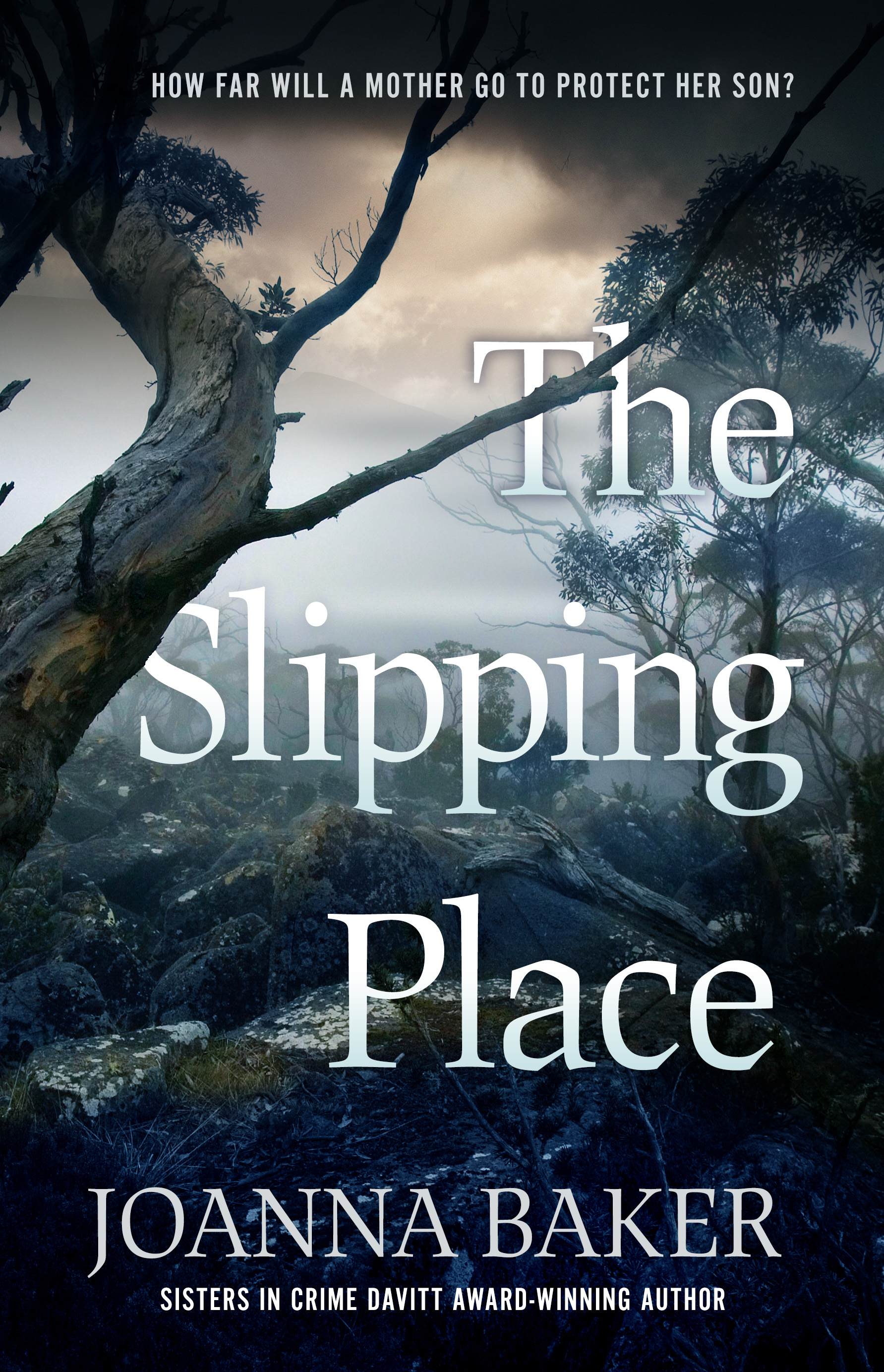 The Slipping Place_cover.jpg