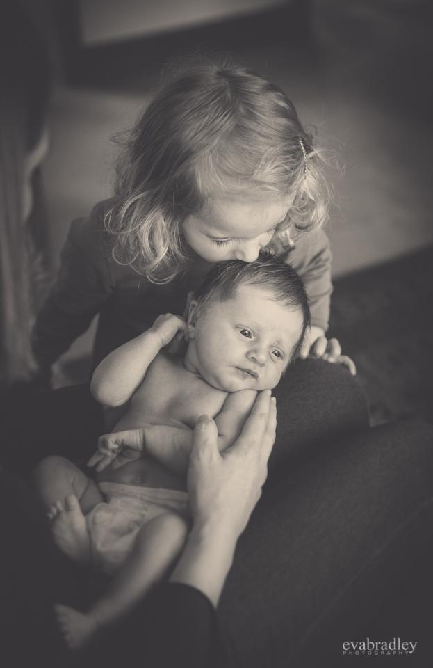 newborn photographers napier