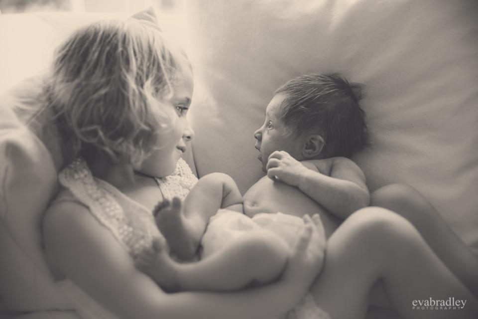 newborn photographers havelock north