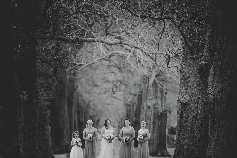 wedding photographers wellington