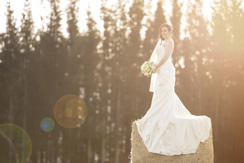 best wedding photographers hawkes bay 1