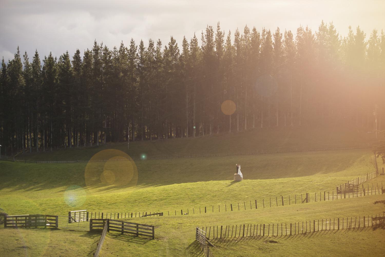 best wedding photographers in hawke's bay