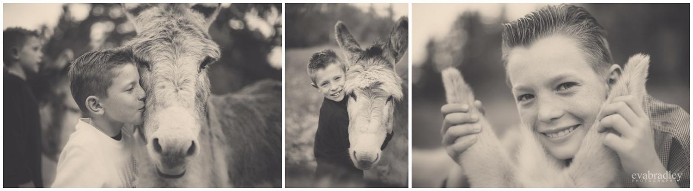 family portrait photographers havelock north