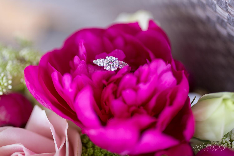 wedding-rings-hawkes-bay