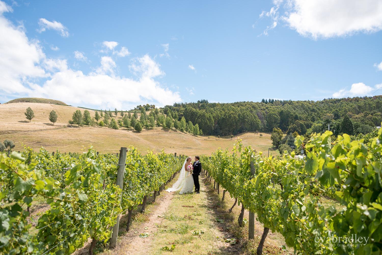 vineyard-weddings-hawkes-bay